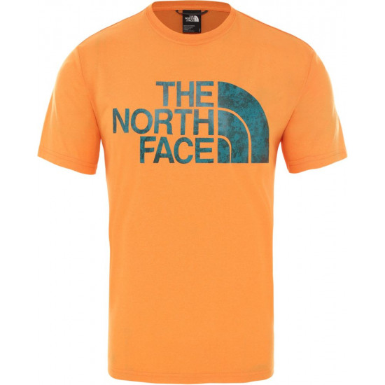 T-Shirt męski THE NORTH FACE Reaxion Easy T94CDVKL9